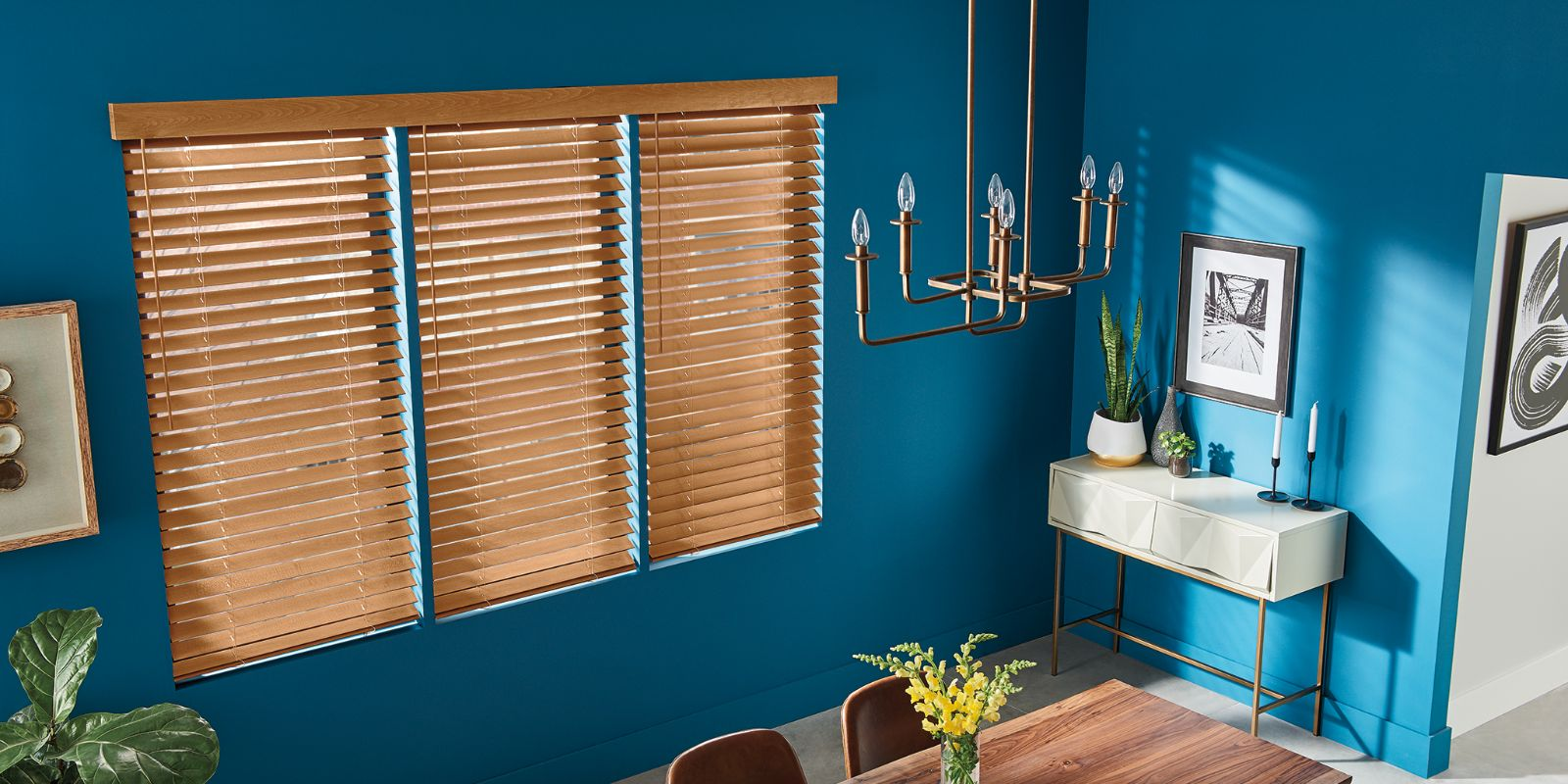 Lexington, KY Wood Blinds